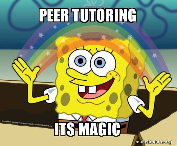 peer tutoring its
