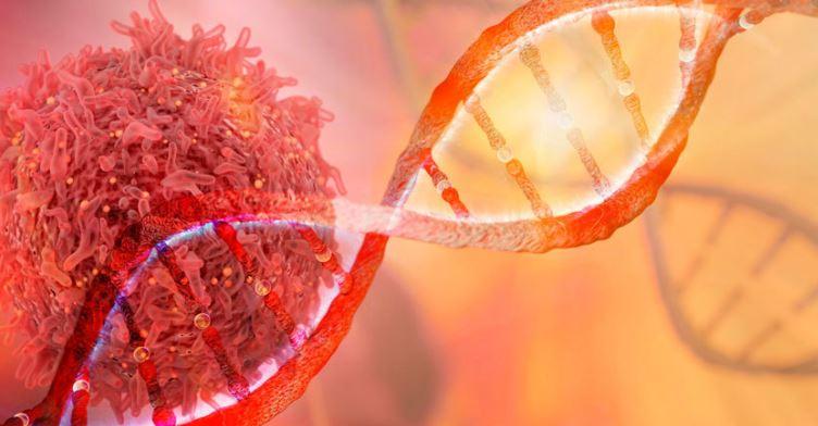 HEREDITY & GENETICS