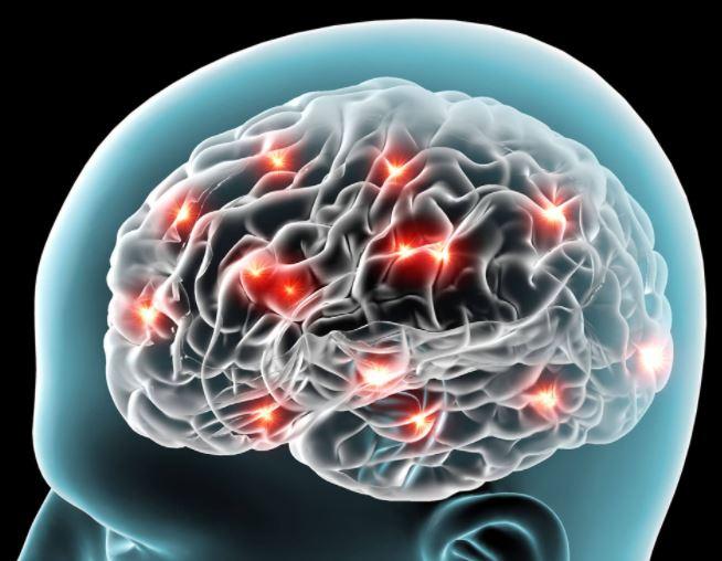 Intro to Neuroscience